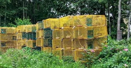 Lobster traps sitting around