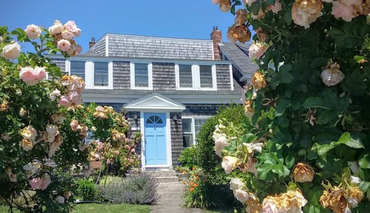 Roses and Cottage