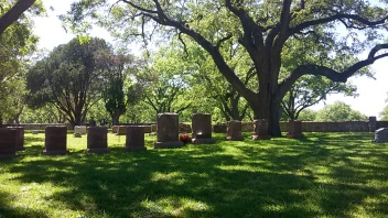 Lady Bird and LBJ Graves