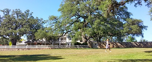 LBJ's Texas WhiteHouse