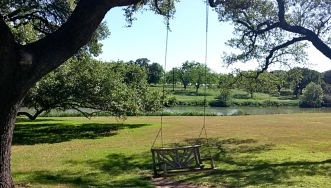 In front of the Pedernales River (LBJ's View)